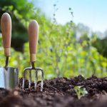 save water garden